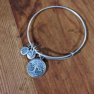 Alex & Ani 'growth' bangle